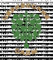 Черкесские сады