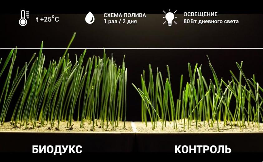 Презентация продукта компании Bionovatic