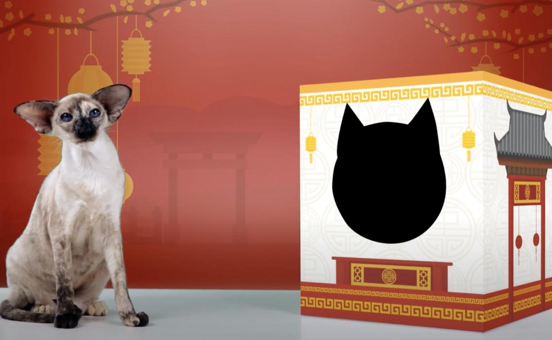 Рекламный ролик кошачьих туалетов